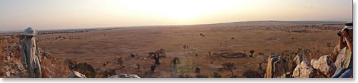 The expansive plains of East Africa