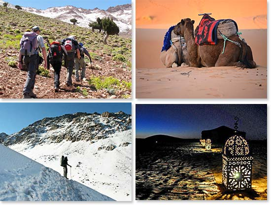 Upper left: Hiking through the lush green trails in Toubkal National Park; Lower left: Hiking Mount Toubkal; Upper right: Camels rest in the tranquil Sahara desert; Lower right: Enjoying a peaceful night in the desert outside of our camp